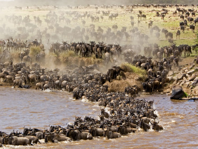 3 days join -in safaris masai mara