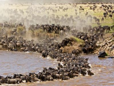 Masai Mara Game Reserve2